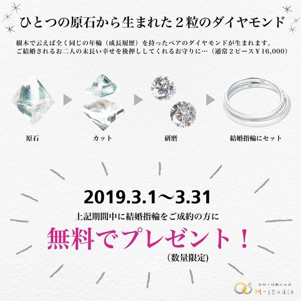 今なら °˖✧特別なダイヤモンド2粒をプレゼント✧˖°